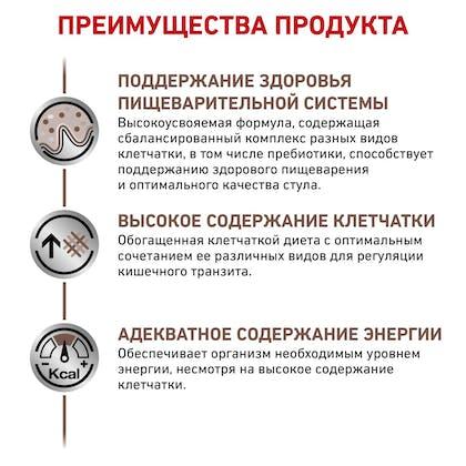 RC-VET-DRY-DogGastroHF-BrandFlagship_rus5