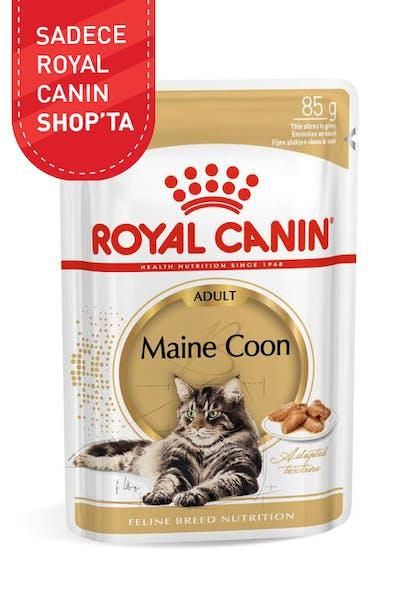 Royal Canin Yaş Kedi Maması Islak Kedi Maması Maine Coon