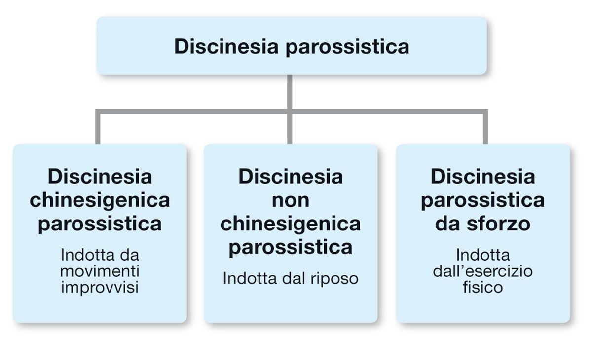 Nei cani sono stati descritti diversi tipi di discinesia parossistica e può essere utile classificarli in base alla causa scatenante.