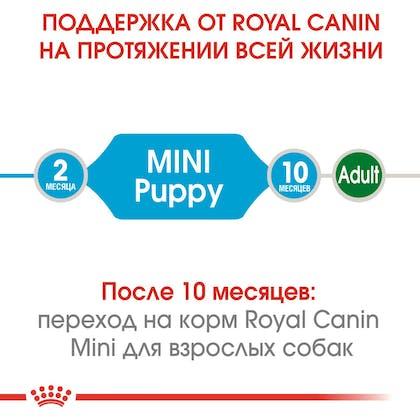 HI_SHN_MINI_PUPPY_DRY_ru_1