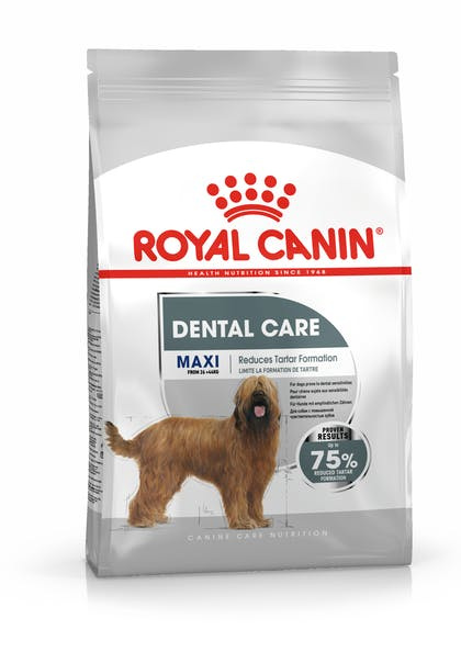 MAXI DENTAL CCN PACKSHOT