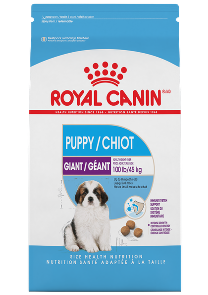 Giant_Puppy_1