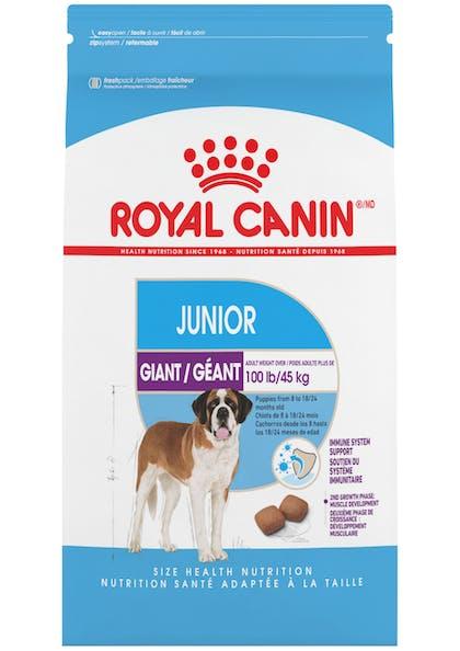 Giant_Junior_1