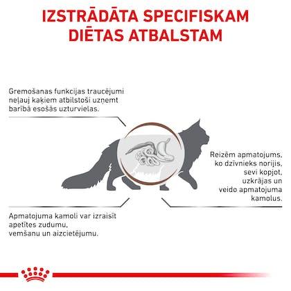 RC-VET-DRY-CatGastroHB-CV-Eretailkit-2-lv_LV