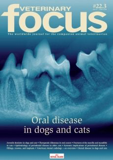 Oral disease in dogs and cats