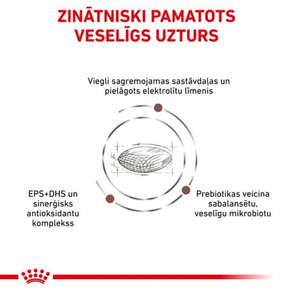 RC-VET-DRY-CatGastroHB-CV-Eretailkit-3-lv_LV