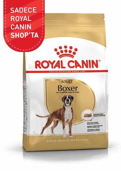 Royal Canin Köpek Maması Boxer Adult