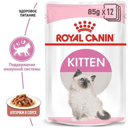 RC-FHN-Wet-KittenInstinctiveGravy_1-RU.jpg