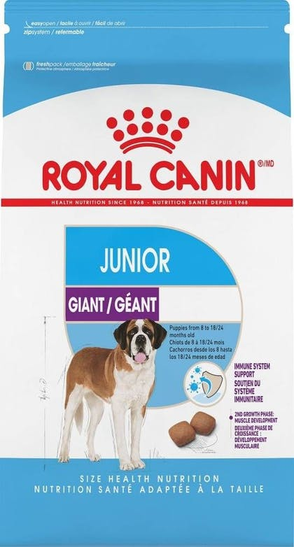 Giant Junior