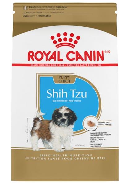 Shih_Tzu_Puppy_1