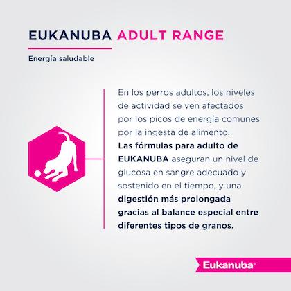 Eukanuba Adult Large Breed - Adulto Talla Grande