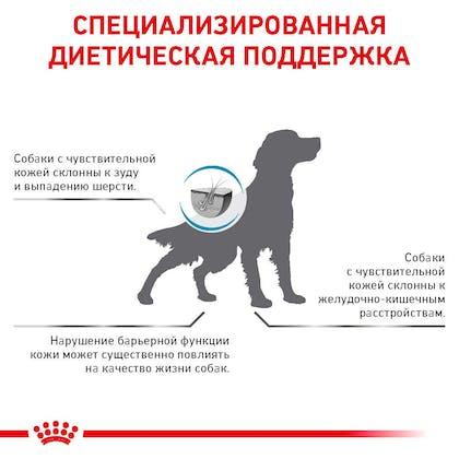 RC-VET-DRY-DogSkinSupp-Eretailkit-B1_9