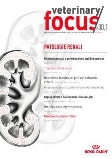 Patologie renali