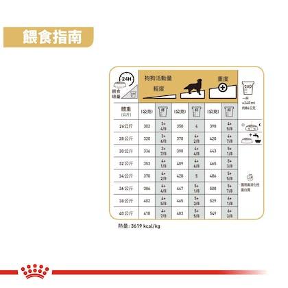 黃金獵犬成犬GRA-3
