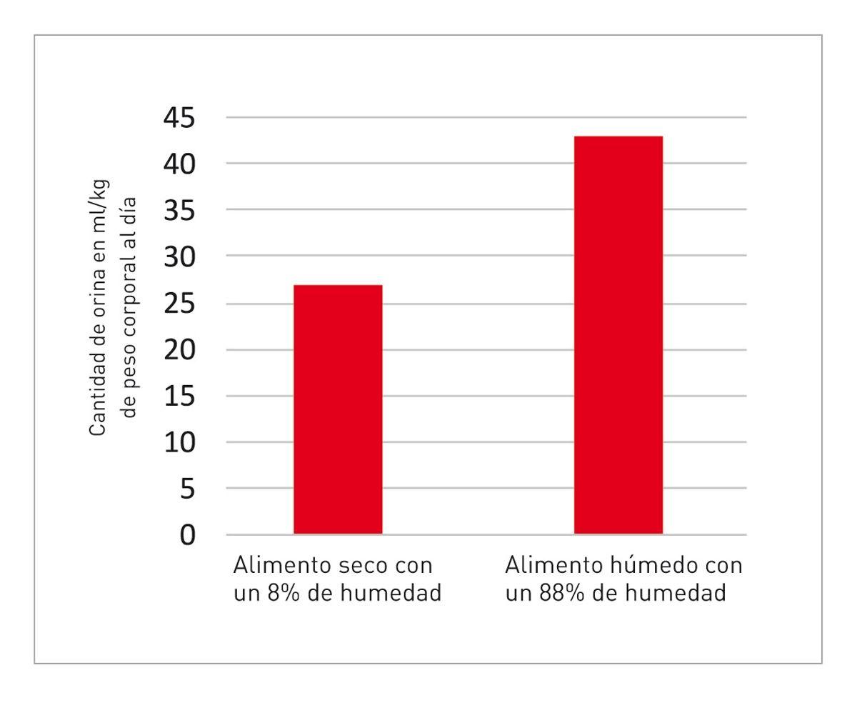 Volumen de orina en gatos que reciben alimentos secos o alimentos húmedos (8).