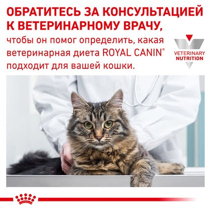 RC-VET-DRY-CatDiabetic-Eretailkit-B1_10