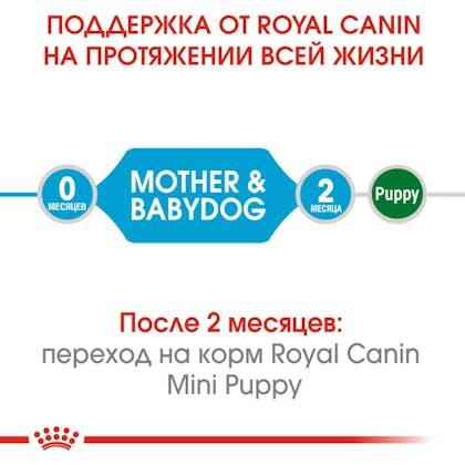 HI_SHN_MINI_STARTER_MOTHER_BABYDOG_DRY_ru_1