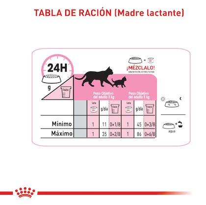 mixfeeding gato_M_B-02 COLOMBIA