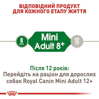 RC-SHN-AdultMini8_2