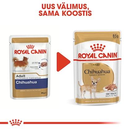 RC-BHN-Wet-Chihuahua-CV-Eretailkit-4-et_EE