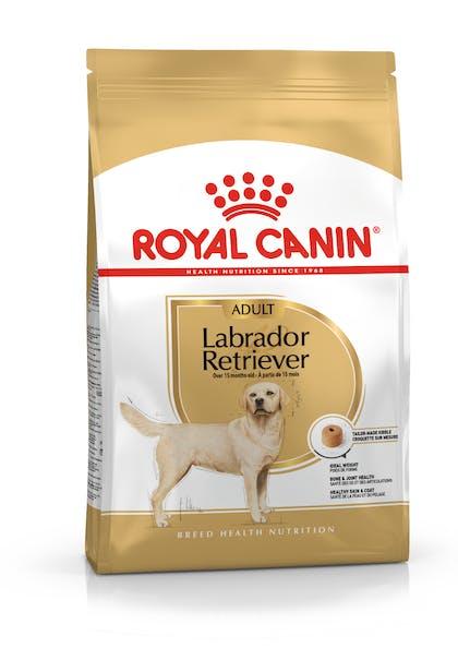 Τροφή σκύλων ράτσας Labrador Retriever άνω των 15 μηνών