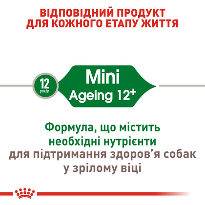 RC-SHN-AgeingMini12_2
