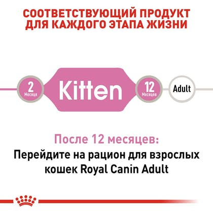 RC-FHN-Wet-KittenInstinctiveLoaf_2-RU.jpg