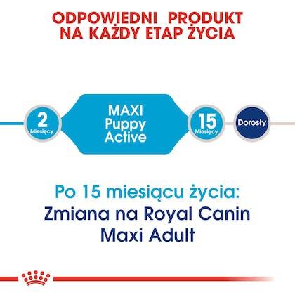 RC-SHN-Puppy-Maxi Active-CV1_013_POLAND-POLISH