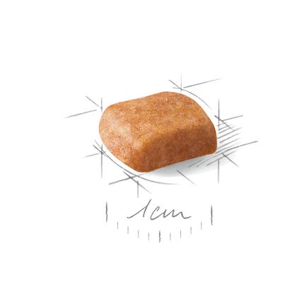 POOD-JU-CROC