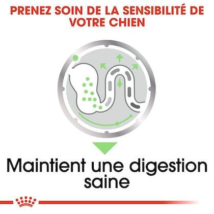 RC-CCN-Wet-Digestive-CV-Eretailkit-3-fr_FR