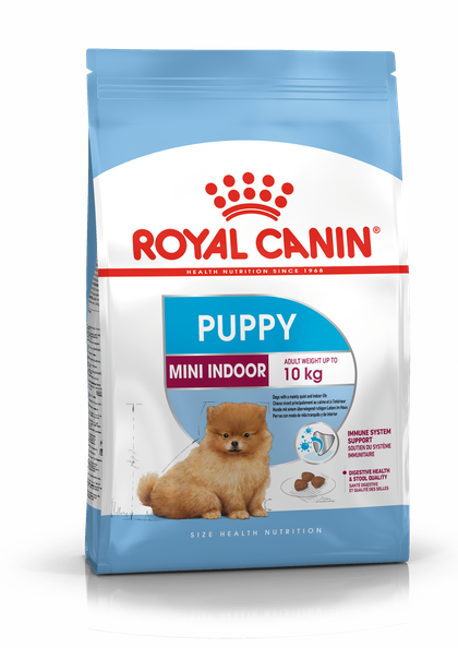 PACKSHOT-PUPPY MINI INDOOR_SHN17