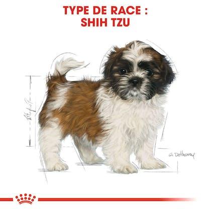 RC-BHN-PuppyShihTzu-CM-EretailKit-4-fr_FR