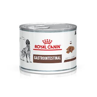 Gastrointestinal Canine