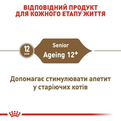 RC-FHN-Ageing12_2-UA.jpg