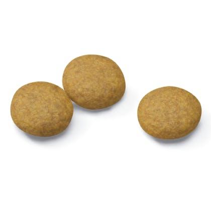 AR-L-Croqueta-Maxi-Dermacomfort-Size-Health-Nutrition-Seco