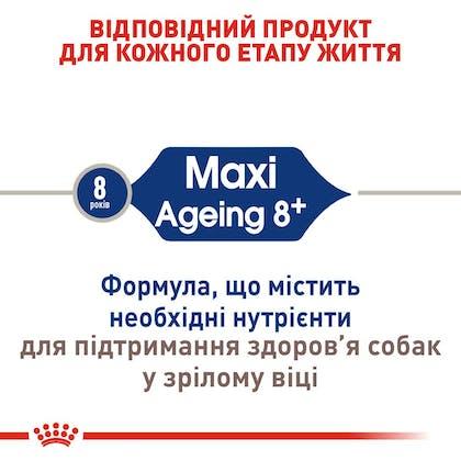 RC-SHN-AgeingMaxi8_2