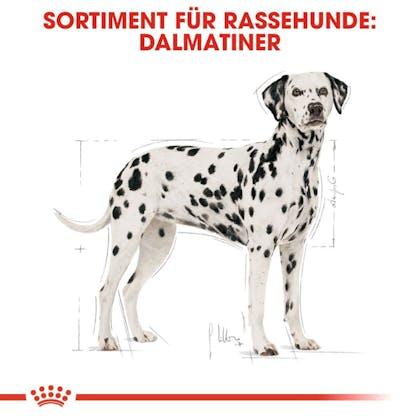 RC-BHN-Dalmatian-Trockennahrung_Sortiment_DE