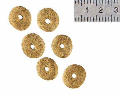 VCN 2011 - Kibbles and wet diet - AD-NEU-VCND-CROC
