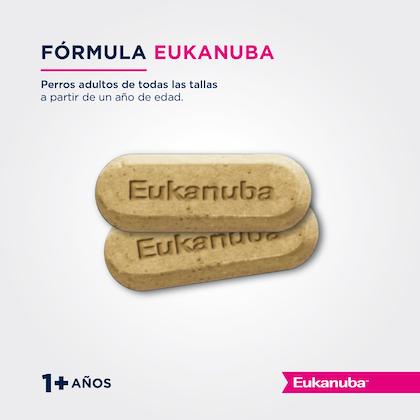 Eukanuba Healthy Extras Adult All Breeds - Adulto