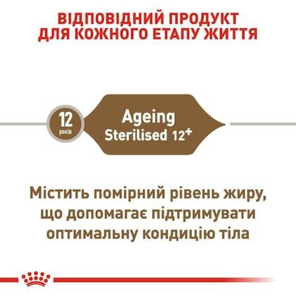 RC-FHN-AgeingSterilised12_2-UA.jpg