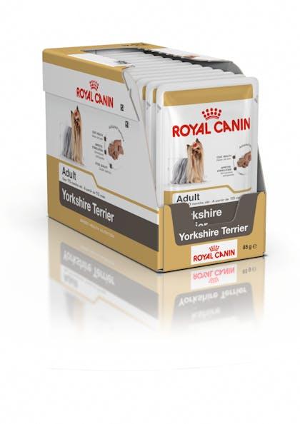 Yorkshire Terrier x12BOX open - BHN Wet