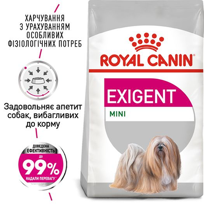 RC-CCN-ExigentMini-1