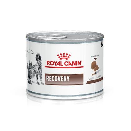 AR-L-Producto-Recovery-CanineFeline-Veterinary-Health-Nutrition-Humedo
