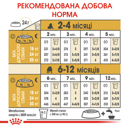 HI_BHN_BULLDOG_PUPPY_ua_6