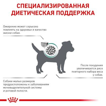 RC-VET-DRY-DogSatietyWMSD-Eretailkit-B1_03