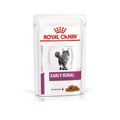 VHN-VITAL SUPPORT-EARLY RENAL CAT WET CIG POUCH 85GR-PACKSHOT