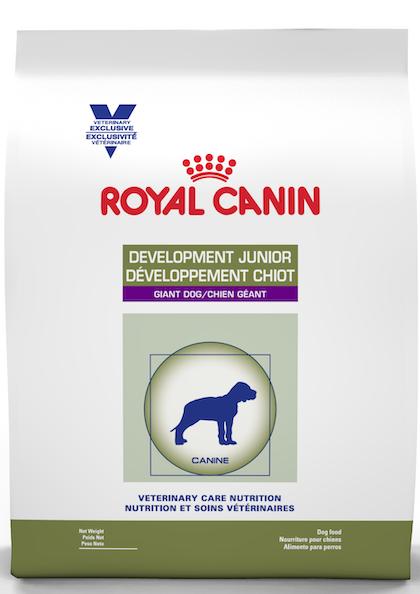 Development_Junior_Dog_1