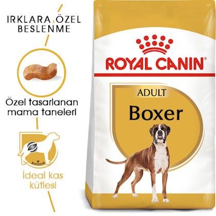 Royal Canin Boxer Adult Köpek Maması 6