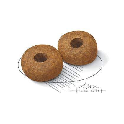 AR-L-Croqueta-Medium-Agening10+-Size-Health-Nutrition-Seco