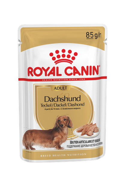 BREED-18_DACHSUND_N_POUCH_85